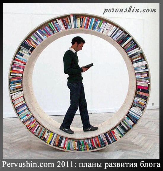 Pervushin.com 2011: планы развития блога