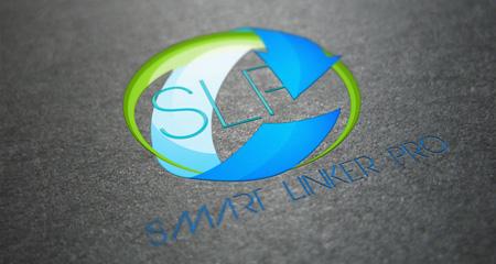 Эффективность WP Smart Linker ... Pro ;)