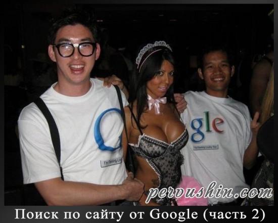 Поиск по сайту от Google (часть 2)