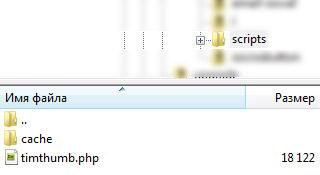 Timthumb.php загружен на сервер в папку с темой